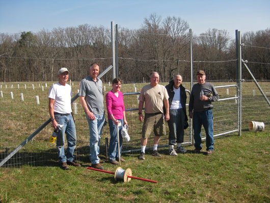 This new orchard was planted in the spring of 2016. This will be a backcross chestnut orchard. The first planting was completed on March 31, 2016. We planted 265 seeds on that day - two lines of Musick B3F1s, plus controls. On April 5th 110 more Virginia Musicks were planted here.