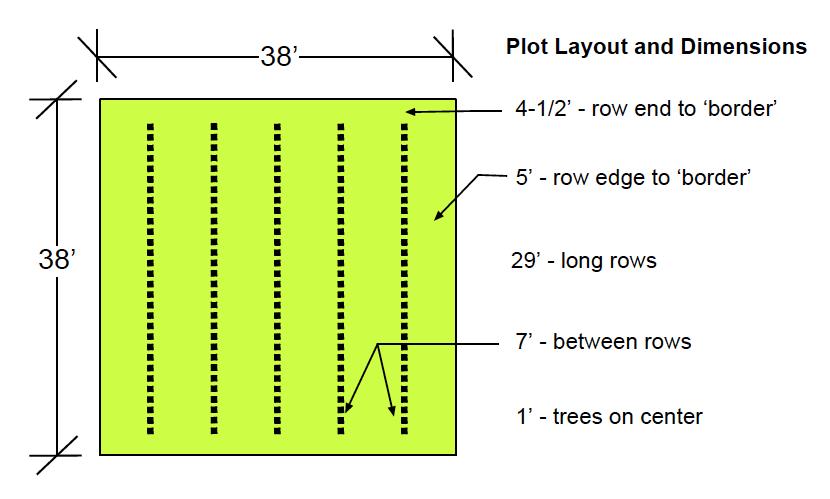 seedorchardplot
