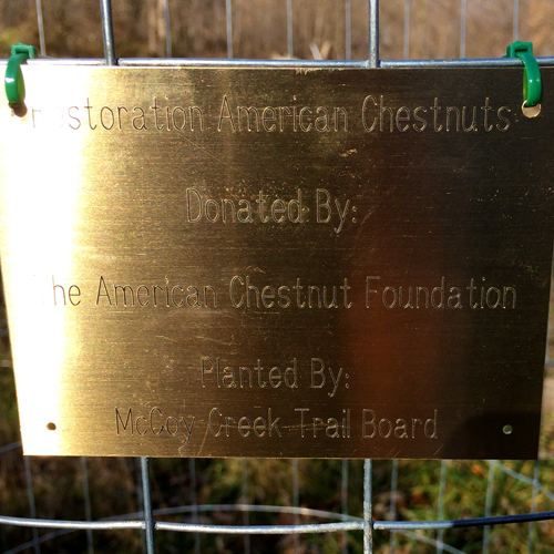 Each cage has a plaque that identifies the tree and who the tree is donated by.