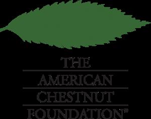www.acf.org