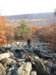 Allegheny woodrat habitat