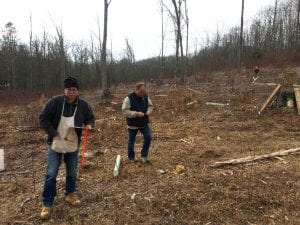 Some volunteers collect data, while others plant trees and install deer exclusion.