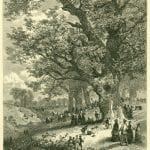 Gathering Chestnuts by JW Lauderbach, from the Art Journal of 1878