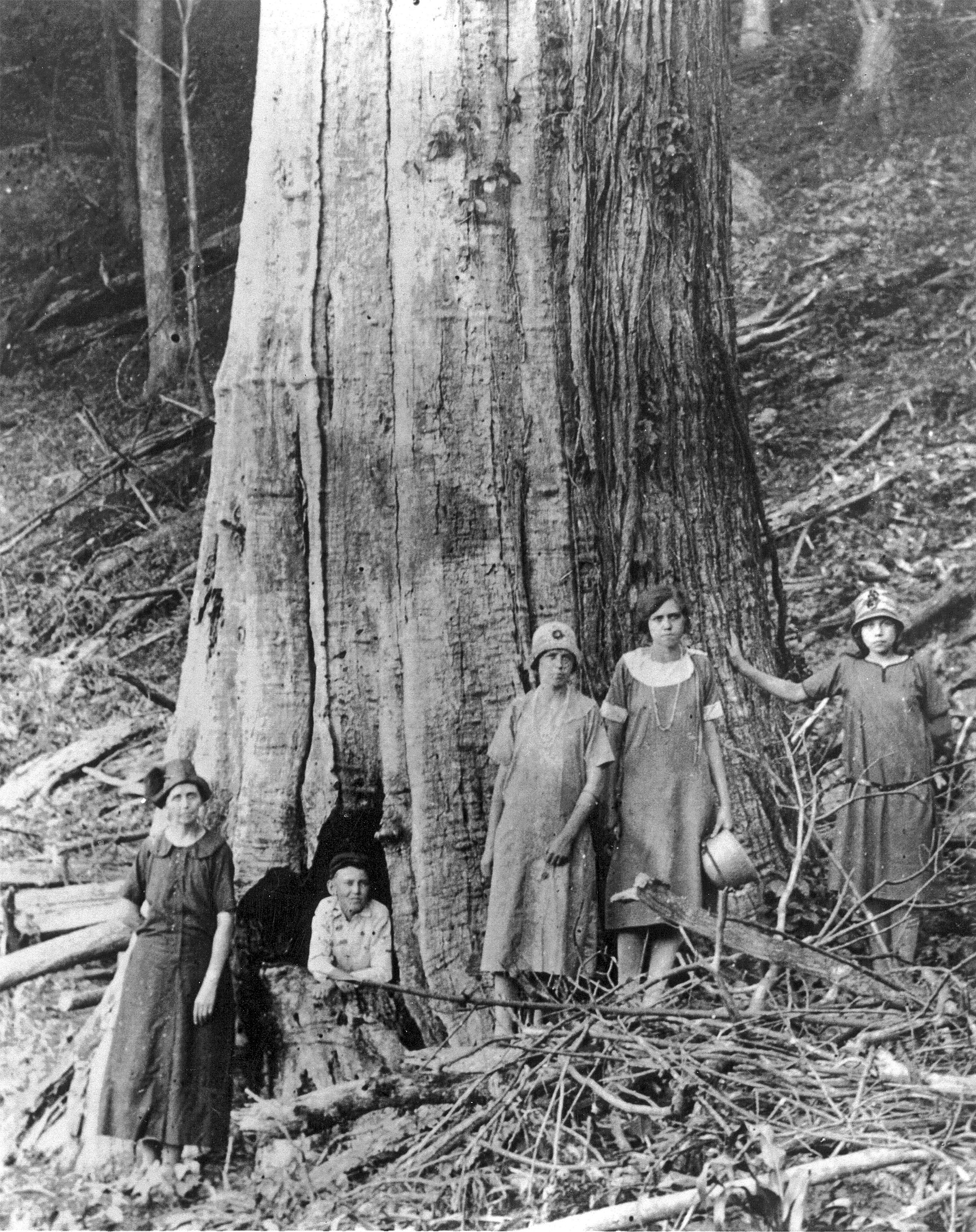 Family Stands By Large American Chestnut The American