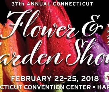 Connecticut Flower Show 2018